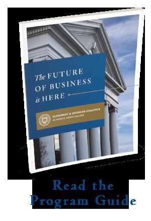 The Economics & Business Analytics Program Guide