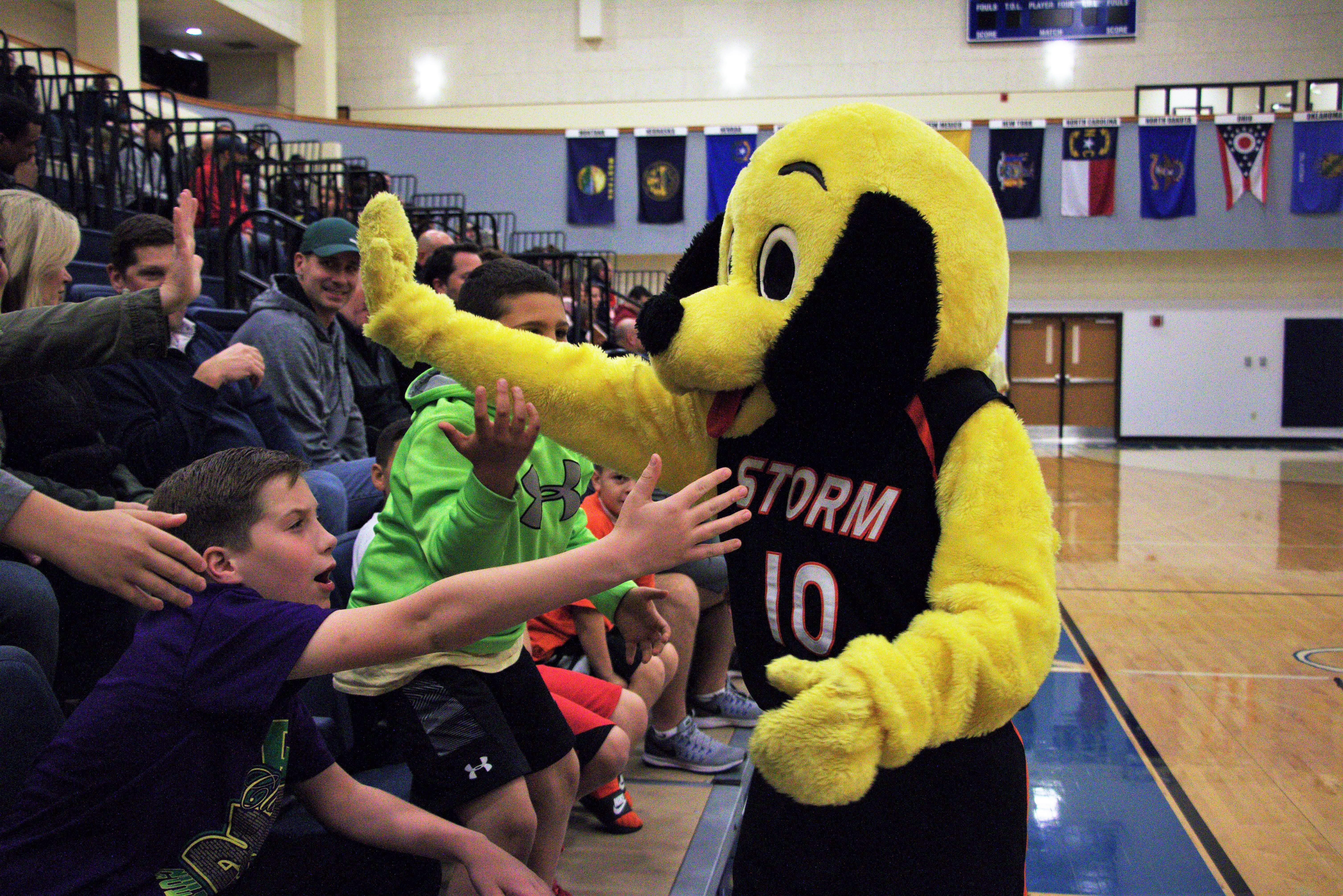 Virginia Storm mascot at a game at Patrick Henry College (PHC)