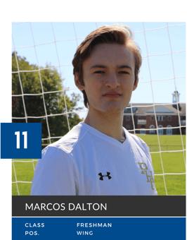 Marcos Dalton