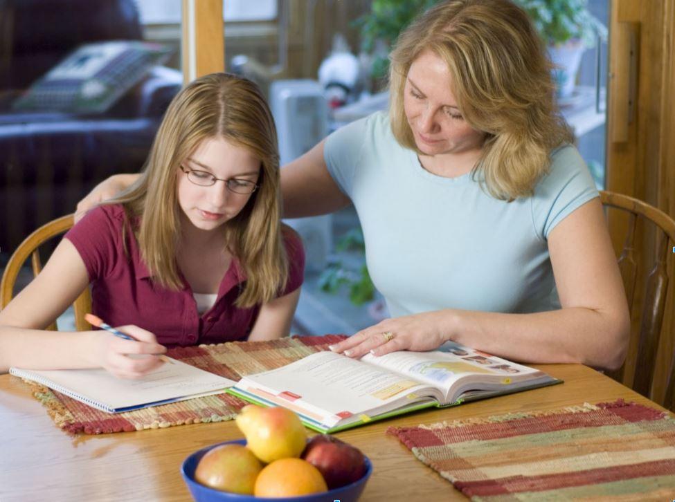 Homeschool student studying