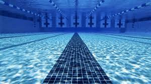 Swim Club_feature image_compressed