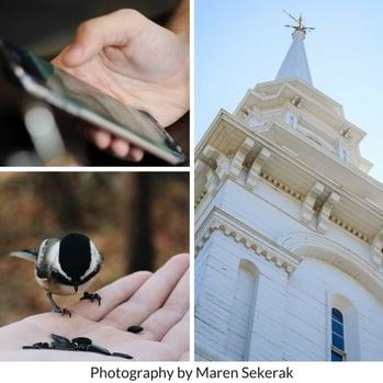 Photography by Maren Sekerak