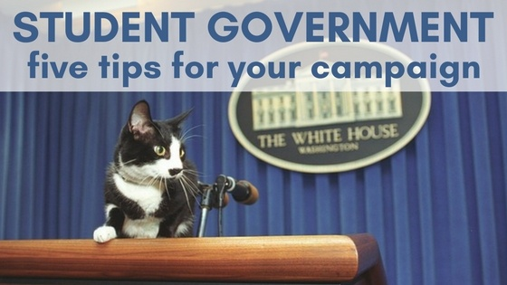 Thinking about student government?